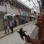 沖縄への修学旅行が前年度比で6割も減少