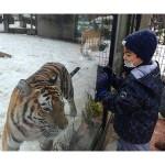 土日祝日限定の「雪の動物園」が始まる