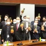 中国が輸入を禁止している台湾産パイナップルを手に記念撮影する自民党の高鳥修一衆院議員(前列右から3人目)と台北駐日経済文化代表処の謝長廷代表(同4人目)ら=24日午後、東京・永田町の参院議員会館