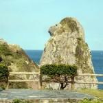 猿の横顔に見える「猿岩」=長崎県壱岐市