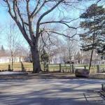 コロナ禍で寂しいウィ―ン市内の公園風景(2021年2月14日、ウィーンで撮影)