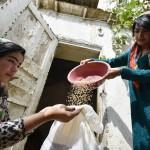 世界の「食糧安保政策」を調査するFAO(FAO公式サイトから)