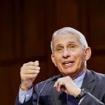 3月、連邦議会で証言する米国立アレルギー感染症研究所のファウチ所長(UPI)