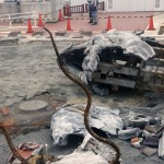首里城の火災は指定管理者の美ら島財団の責任