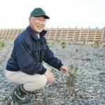 宮城の農協で、海岸防災林の復活に「コンテナ苗」