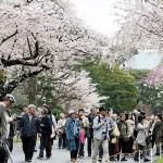 天皇陛下の傘寿記念で皇居・乾通りを一般公開